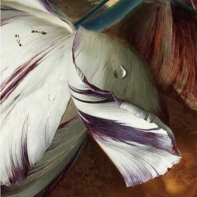 jan van huysum detail painting - عناصر بصری در هنرهای تجسمی