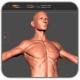 mojasamesazi anatomi zibrush 80x80 - مدل سازی یک دزد دریایی با استفاده از ZBrush