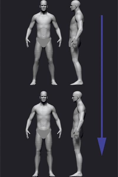 mojasamesazi anatomi zibrush8 - آموزش ساخت آناتومی در زیبراش