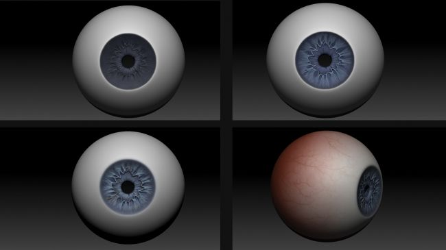 paint the eye - مدل سازی چشم در زیبراش