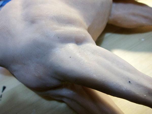 step11 pic1 polymerhorse - آموزش گام به گام ساخت مجسه پلیمری اسب